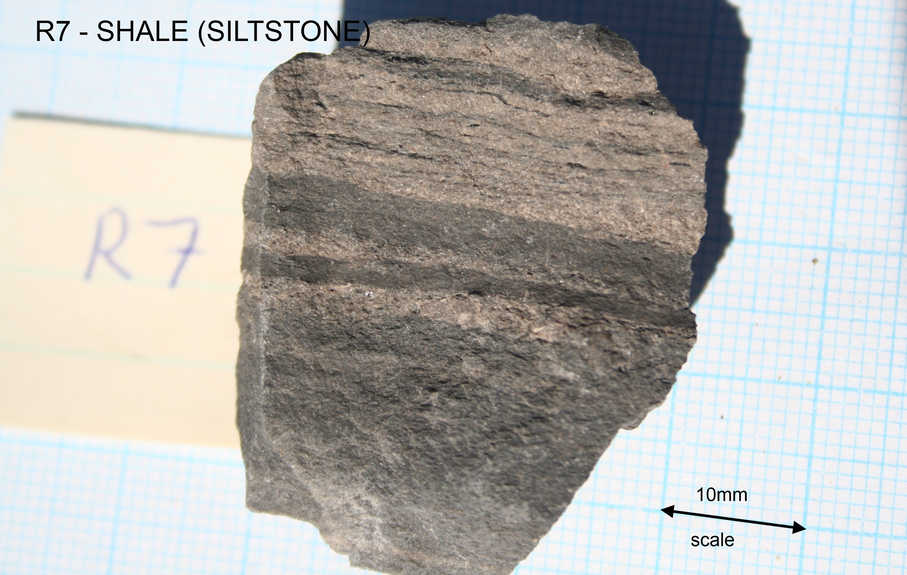 Shale (banded siltstone)